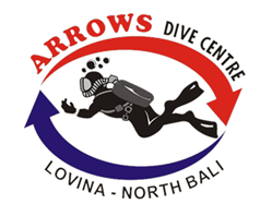 Arrows Dive
